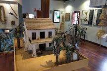 Museo del Palmeral Huerto de San Placido, Elche, Spain