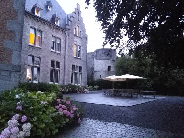 Vestiges du Château Comtal