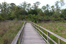 Audubon Corkscrew Swamp Sanctuary, Naples, United States