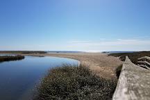 Ridgevale Beach, Chatham, United States