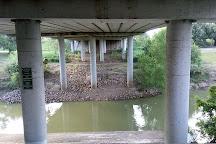 Waugh Drive Bat Colony, Houston, United States