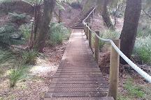 Preston Falls, Ulverstone, Australia