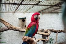 Zoo Lourosa, Santa Maria da Feira, Portugal