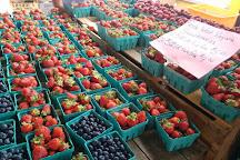 Eastern Market, Washington DC, United States