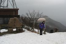Mt. Yahiko, Niigata Prefecture, Japan