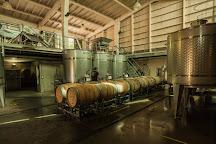 Kingston Family Vineyards, Casablanca, Chile