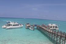 Seafari Bahamas, San Salvador, Bahamas