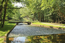 Amsterdamse Waterleidingduinen, Vogelenzang, The Netherlands