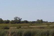 Horicon National Wildlife Refuge, Mayville, United States