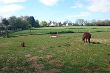 Boydells Dairy Farm, Wethersfield, United Kingdom