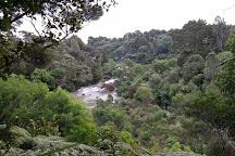 Kerikeri River Track, Kerikeri, New Zealand