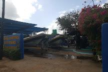Gozo Azul Diving, Ponta do Ouro, Mozambique