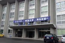 Tokai University Marine Science Museum Natural History Museum, Shizuoka, Japan
