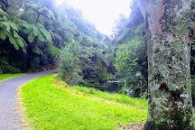 Te Henui Walkway, New Plymouth, New Zealand
