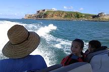 San Juan Boat Rentals, LLC, San Juan, Puerto Rico