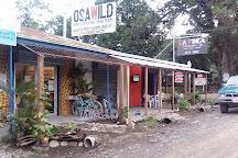 Osa Wild, Puerto Jimenez, Costa Rica