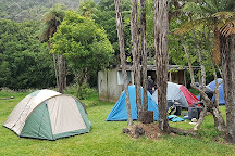 Whanganui National Park, Whanganui, New Zealand