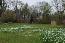 Cross Estate Gardens, Bernardsville, United States