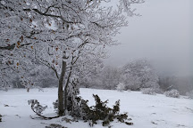 Mont Saleve, Haute-Savoie, France