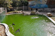 Szeged Zoo, Szeged, Hungary