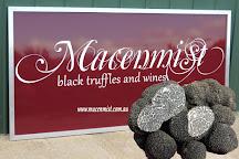 Macenmist Black Truffles & Wines, Bredbo, Australia