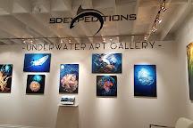 SD Expeditions, La Jolla, United States