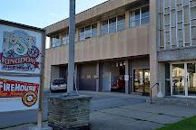 Lost Kingdom Brewery, Ovid, United States