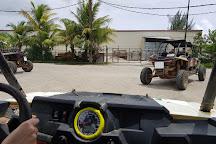 Let's Go Tour Company, Saipan, Northern Mariana Islands