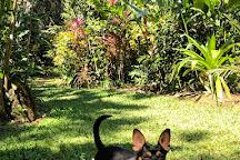 Villa Vanilla / Rainforest Spices, Manuel Antonio, Costa Rica