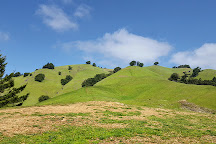 Mount Tamalpais State Park, Mill Valley, United States