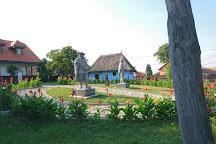 Muzeul Badea Cartan, Cartisoara, Romania