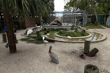 Peace River Wildlife Center, Punta Gorda, United States