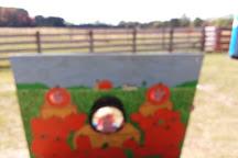 Gene the Pumpkin Man, Kalamazoo, United States