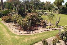 Sarkaria Cactus Garden, Panchkula, India