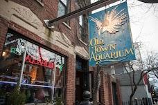 Old Town Aquarium chicago USA