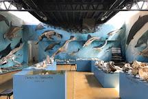 Acatushun Museum, Ushuaia, Argentina