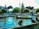 Управління освіти і науки Броварської міської ради на фото Бровар
