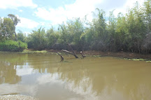 Animal Tracks Safari, Kakadu National Park, Australia