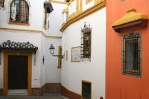 Pancho Tours, Seville, Spain