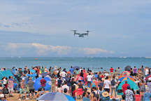 Chicago Air and Water Show, Chicago, United States