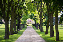 Shalom Memorial Park, Arlington Heights, United States