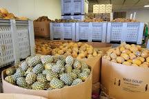 Maui Pineapple Tours, Makawao, United States