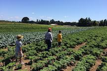 Sauvie Island Farms, Portland, United States