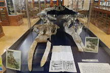 Geology Museum (Museu de Geologia), Barcelona, Spain