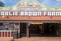 Charlie Brown Farms, Littlerock, United States