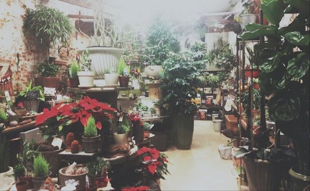 City Planter