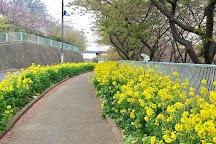 Komatsugaike Park, Miura, Japan