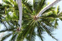 Palm Cove Retreat Day Spa, Palm Cove, Australia