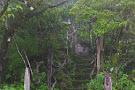 Valle Escondido Preserve