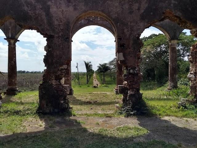 Ruinas del antiguo cafetal Angerona